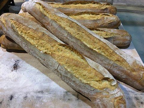 lavienesa.es - Barra galaica - Panadería La Vienesa